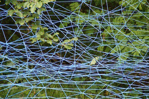 Web, Blue, Branches, Lavizzara, Entangled, Tangle