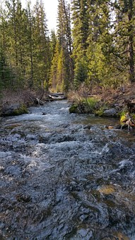 Tumalo Falls, Hiking, Deschutes, River, Stream