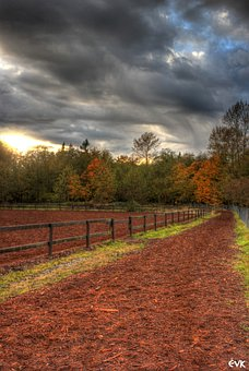 Track, Horse, Clouds, Park, Fence, Campbell, Valley