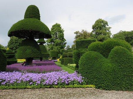 Topiary, Hedge, Formal, Garden, Shrub, Plants, Flower