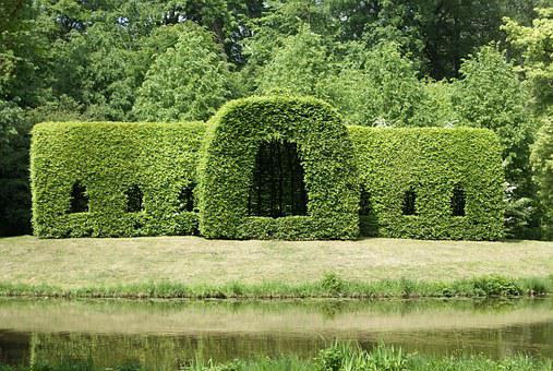 Hedge, Park, Nature, Cut Art