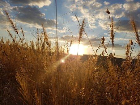 Cappadocia, Wheat Of Virgo, Cavusin