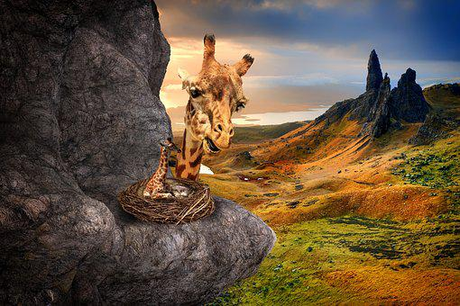 Surreal, Fantasy, Giraffes, Landscape, Nest