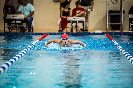 Swimming, Butterfly, Pool, Competition, Swim, Swim Team