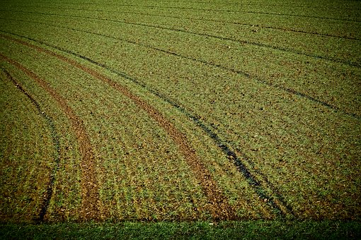Landscape, Field, Nature, Arable, Agriculture, Ground