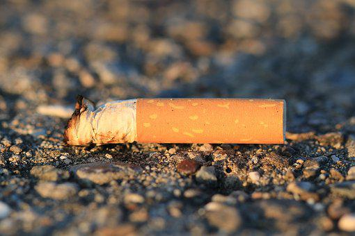 Cigarette, Stub, Cheroot, Cigarette End, Smoking, Tilt