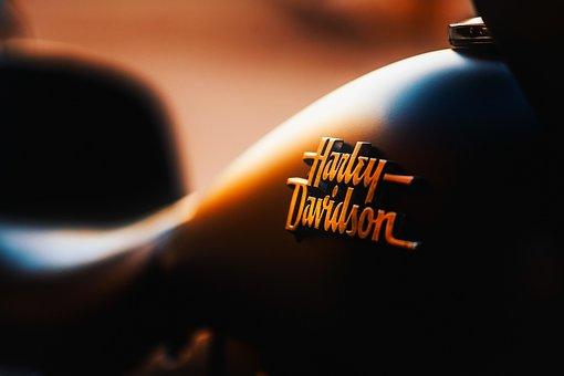 Harley-davidson, Motorcycle, Travel, Transportation