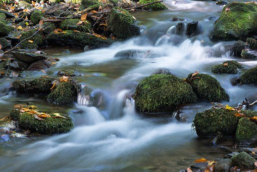 Badínsky Forest, Mountain, Water, Creek, Moss, Stones