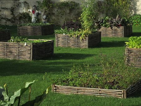 Vegetable Garden, Garden, Candé, France