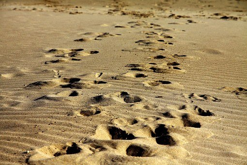 Footprints, Sand, Walk, Beach, Foot, Print, Travel