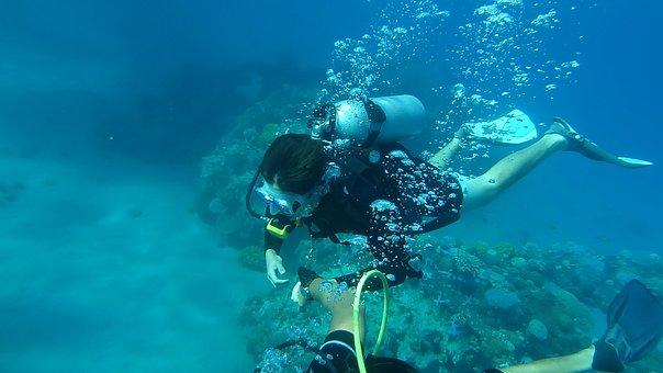 Diving, Sea, Underwater, Water, Blue, Summer, Ocean
