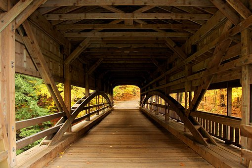 Bridge, Covered Bridge, Forest, Forest View, Autumn