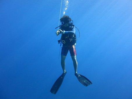 Diver, Scuba, Blue, Safety Stop, Scuba Diver, Sea