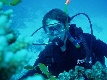 Diving, Water, Divers, Breathing Apparatus, Underwater
