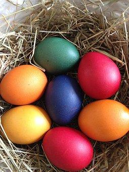 Egg, Easter, Nest, Easter Egg, Colored Egg, Colored