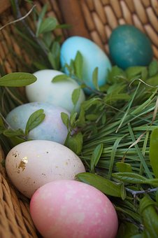 Eggs, Easter, Easter Egg, Holiday, Spring, White
