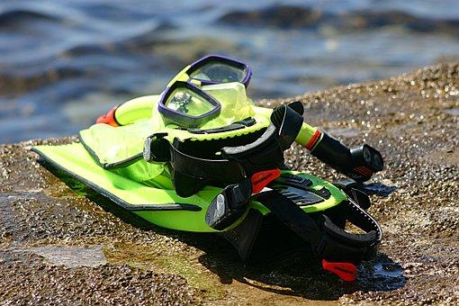 Snorkle, Dive, Explore, Mask, Flippers, Gear