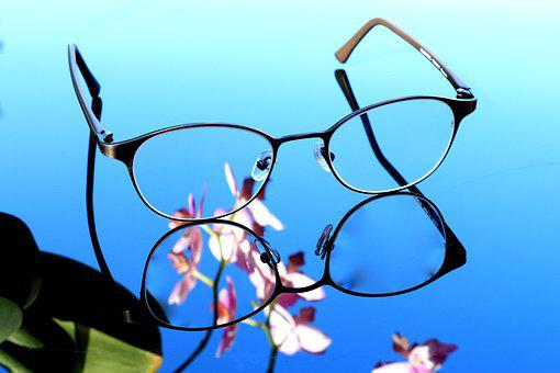 Glasses, Orchid, See, Sharpness, Lenses, Eye Glasses