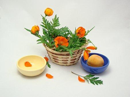 Flowers, Basket, Green, Orange, Yellow, Blue, Nature
