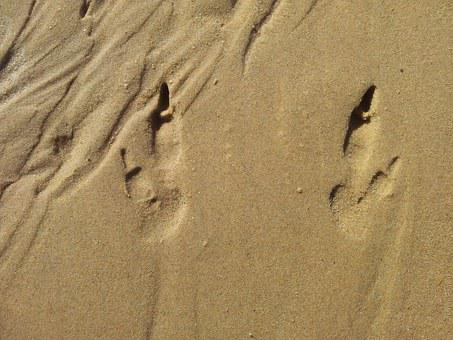 Footprints, Sand, Tracks, Footprint, Footsteps, Track