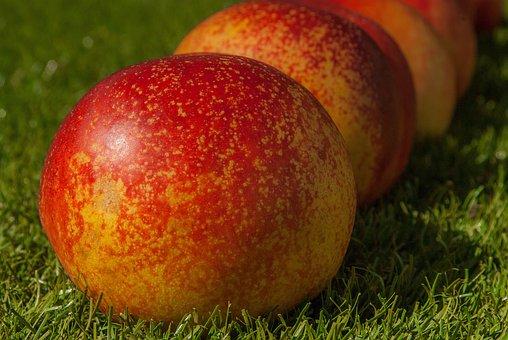 Peach, Fruit, Vitamins, Fresh, Red