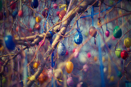 Easter Eggs, Easter, Tree, Willow, Eggs, Spring