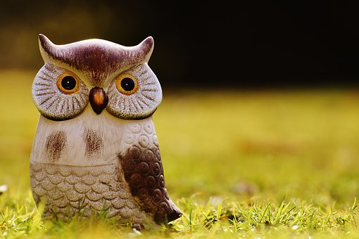 Owl, Bird, Funny, Meadow, Ceramic, Animal, Cute, Deco