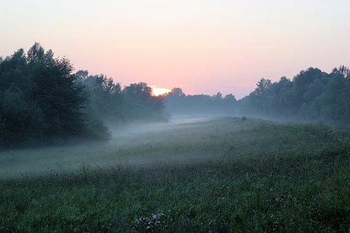 Nature, Foggy, Sunrise, Landscape, Meadow, Mysterious