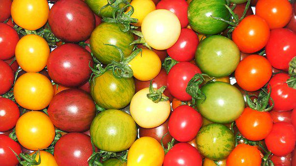 Tomato, Petit Tomatoes, Red, Cherry Tomato, Colorful