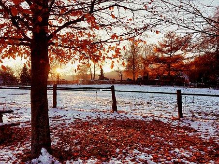 Sunset, Snow, Autumn, Winter, Wintry, Cold
