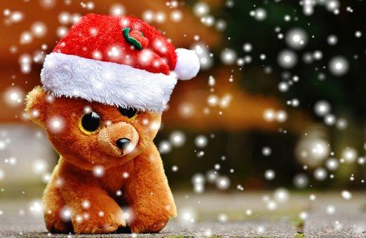 Christmas, Teddy, Snow, Soft Toy, Santa Hat, Funny