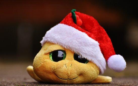 Christmas, Turtle, Stuffed Animal, Soft Toy, Santa Hat
