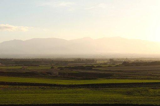 Plain, Sardinia, Landscape, Fog, Morting, Vista, Green