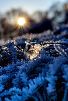 Soap Bubble, Seifenblase Frozen, Ice, Cold, Hoarfrost