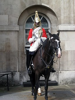Horse, Guard, London, English