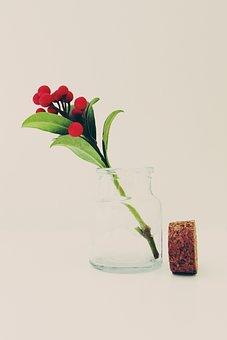 Glass, Bottle, Cork, Plant, Transparent, Decoration