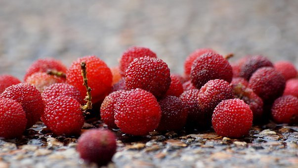 Berry, Bayberry, Red, Healthy, Fruit, Sweet, Fresh