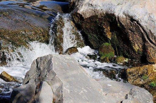 Bach, Creek, Water, Splash, Spray, Stones, Moss