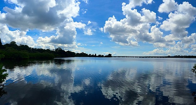 Oldsmar, Florida, Water Reflection, Clouds, Sky