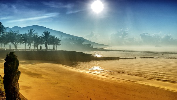 Beach, Sea, Vacations, Water, Palm Trees, Bali