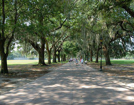 Forsyth Park, Savannah, Georgia, Usa, Park, Tourism