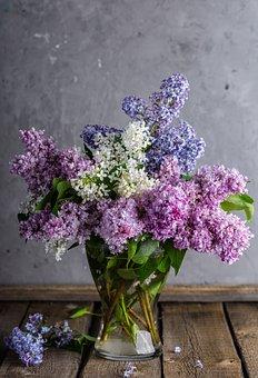 Lilacs, Bouquet, Vase, Flowers, Flower Vase
