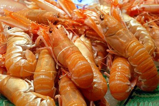 Food, Prawn, Seafood, Shrimp, Fish, Fresh, Healthy