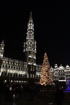 Fir, Christmas, Brussels, Belgium, Decoration, Lights