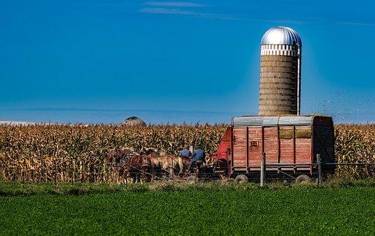 Amish, Indiana, Old Fashioned, Farm, Agriculture, Silo