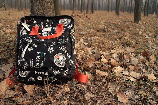 The Leaves, Backpack, Woods, Autumn, School, Forgotten