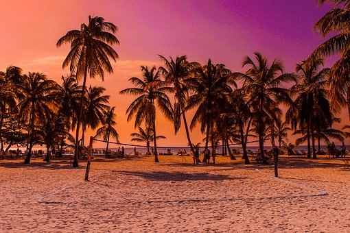 Caribbean, Beach, Sunset, Holiday, Sea, Palm Trees