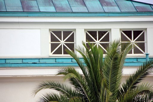Palm, Tree, Building, Window, Roof, Blue