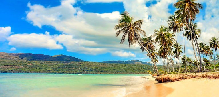 Beach, Paradise, Palm Trees, Sea, Holiday, Bathing