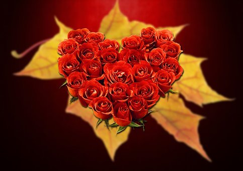 Love, Heart, Valentine's Day, Red, Affection, Hearts